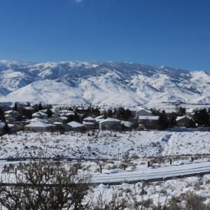 リノの雪景色