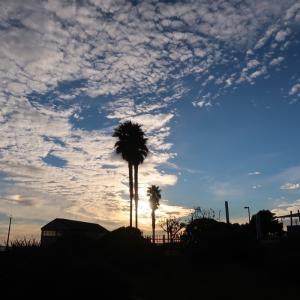 雲の多い日の午後