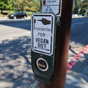 UC Berkeley: キャンパス周辺で見かけた光景