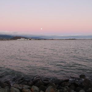 月がとっても綺麗だから…
