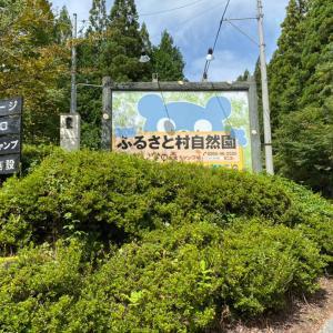 長野県 ふるさと村自然園 せいなの森キャンプ場