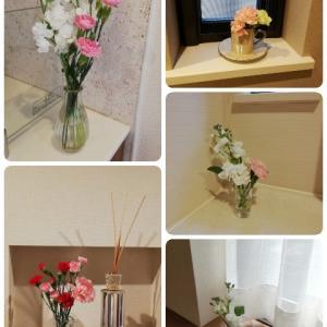 こんな時こそおうちにお花を飾ってみる!