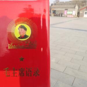 【2019年12月】北京旅行記 最終日編 ~盧溝橋からのさよなら北京、こんにちはコロナウィルス~