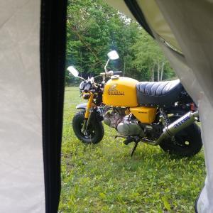 遂にキャンプに行った!お話。②
