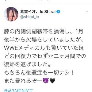 【WWE】紫雷イオが怪我から復帰でラダーマッチ!痛そうな負傷動画と欠場期間のすっぴん画像#WWE