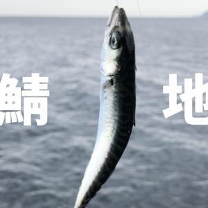 東伊豆の地磯「いがいが根」小鯖地獄との闘い!