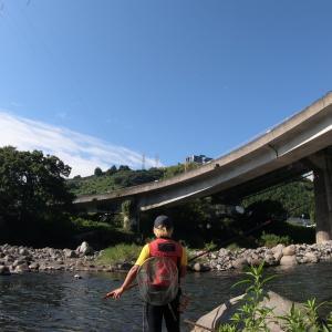 【バカなのか】早川の鮎、昨日のリベンジに同じ場所へ・・結果川の中を歩いた距離700m以上(笑)
