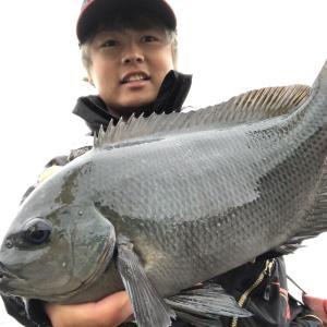 堤防フカセ釣り、軽い仕掛けを使ってみたいアナタにオススメする『インセンドG0システム』 江之浦漁港