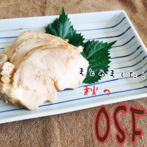 秋のOSF~秋のお弁当のスキマフェア~まとめ
