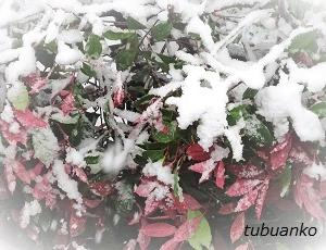 雪がやみ、やがて溶けていくように