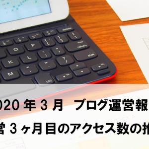 【ブログ運営報告】多忙を極め目標の3分の1の記事数だった3月【3ヶ月目】