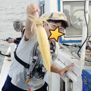 ティップランの道具で夏にアカイカ(ケンサキイカ)を釣ろう