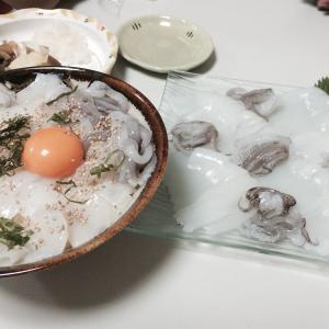 アオリイカ最強丼のご紹介