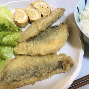鮮魚アジ料理