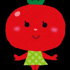 トマトの成長~家庭菜園2020年05月第5週