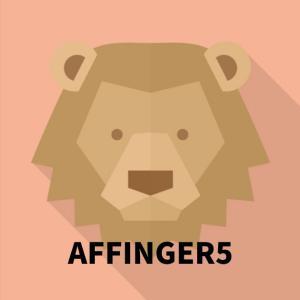 AFFINGER5(アフィンガー 5)は初心者には難しい?【購入レビュー】