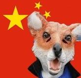 中国の反体制派狩り キツネ狩り/FoxHuntをしていた工作員