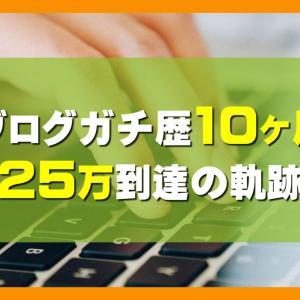 ブログで25万円稼ぐまでの10ヶ月の軌跡