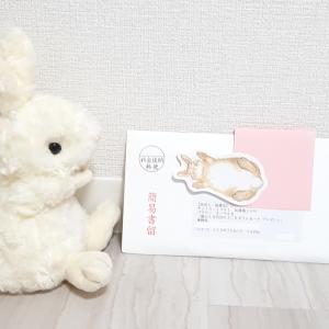 ☆3つ目☆ P&Gさんから、JCBギフトカード3万円分が届きました♪