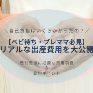 自己負担はいくらかかった?【ベビ待ち・プレママ必見】リアルな出産費用を大公開!