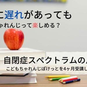 【こどもちゃれんじ】は、発達障害児でも楽しめる?実際に4ヶ月受講した感想