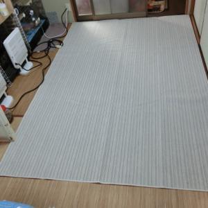 ウサギ部屋にカーペット敷きました