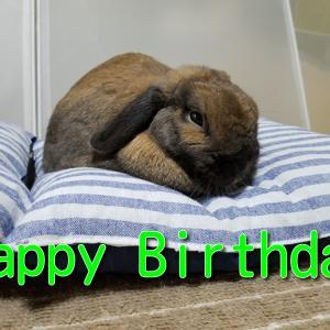 グリ お誕生日おめでとう!