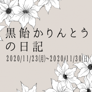 黒飴かりんとうの日記 2020/11/23(月)~2020/11/30(日)