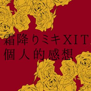霜降りミキXIT(ゲスト:新井恵理那さん) 個人的感想