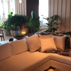 「東京エディション虎ノ門ホテル」は「Go To トラベル」を使って新しいうちに宿泊しよう!