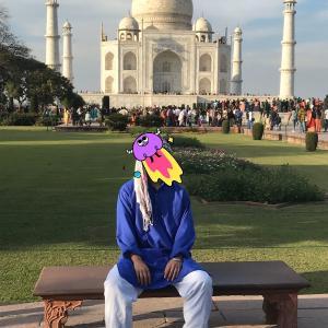 インド行ってきたわ