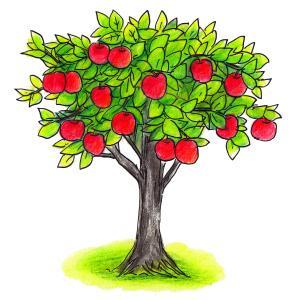 これで良いのかちょっとよくわからない【絵本】つんつくせんせいとふしぎなりんご