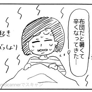 (498) タオルケットは日本限定?