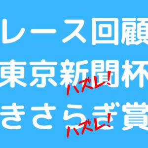 【東京新聞杯&きさらぎ賞回顧】ヴァンドギャルドの出遅れ、僕は許した!