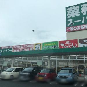業務スーパー&本日のモモちゃんルルちゃん♪