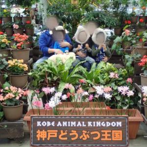 子供たちと行きたい場所♪神戸どうぶつ王国