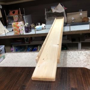 モルモットの渡る橋♪DIYで作りました(*'ω' *)