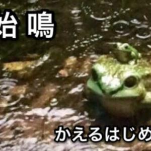 蛙始鳴(立夏初候)