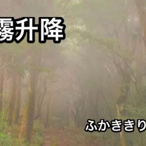 蒙霧升降(立秋末候)