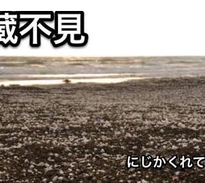 虹蔵不見(小雪初候)