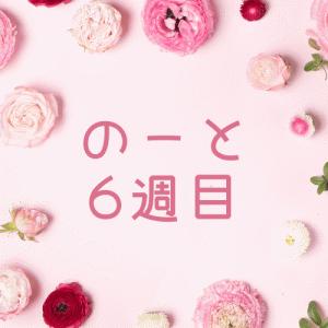 税理士試験勉強ノート公開(5/7から5/13)