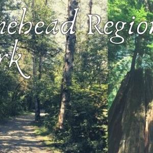 タインヘッドリジョナルパークバンクーバー近郊の公園Tynehead Regional Park
