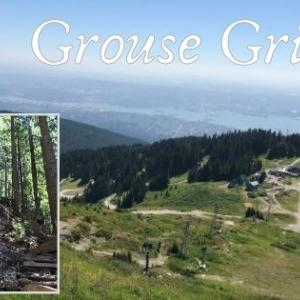 子供も登れるグラウス・グラインド頂上の景色とアクティビティ満載!