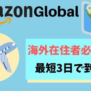 海外在住者のためのAmazon global まとめ買いでお得に最短3日で届く!