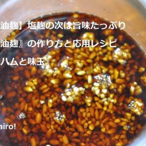 【醤油麹】塩麹の次は旨味たっぷり『醤油麹』の作り方と応用レシピ『鶏ハムと味玉』東京の発酵ワークショップnanairo!のレシピ