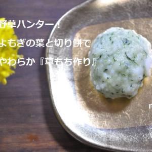 野草ハンター!よもぎの葉と切り餅でやわらか『草もち作り』東京の発酵ワークショップnanairo!のレシピ