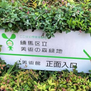 練馬には「緑地」が多い~美術の森緑地