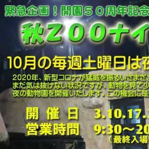 【沖縄こどもの国夜の動物園 秋ZOOナイト】時間、料金は?涼しい夜に活発な動物たちを見学しよう!