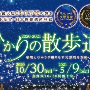 沖縄市東南植物楽園イルミネーション2020 ひかりの散歩道が今年も開催!