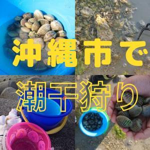 沖縄市泡瀬干潟で潮干狩り!時期や採り方、おいしい海の幸レシピもご紹介します♪